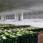 Guntner Agri-Cooler — воздухоохладитель для сельскохозяйственной