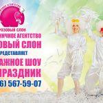 Аниматоры на детский праздник в Солнечногорске.