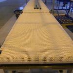 Пластиковые конвейерные ленты для пищевых производств в Белоруссии, Казахстане от крупнейшего Ро